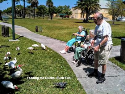 outing-Feeding-the-Ducks-Such-Fun-IMG_0188